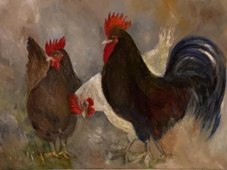 Dieren kippen 1