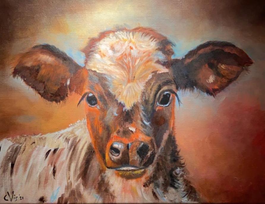 Dieren koe 1