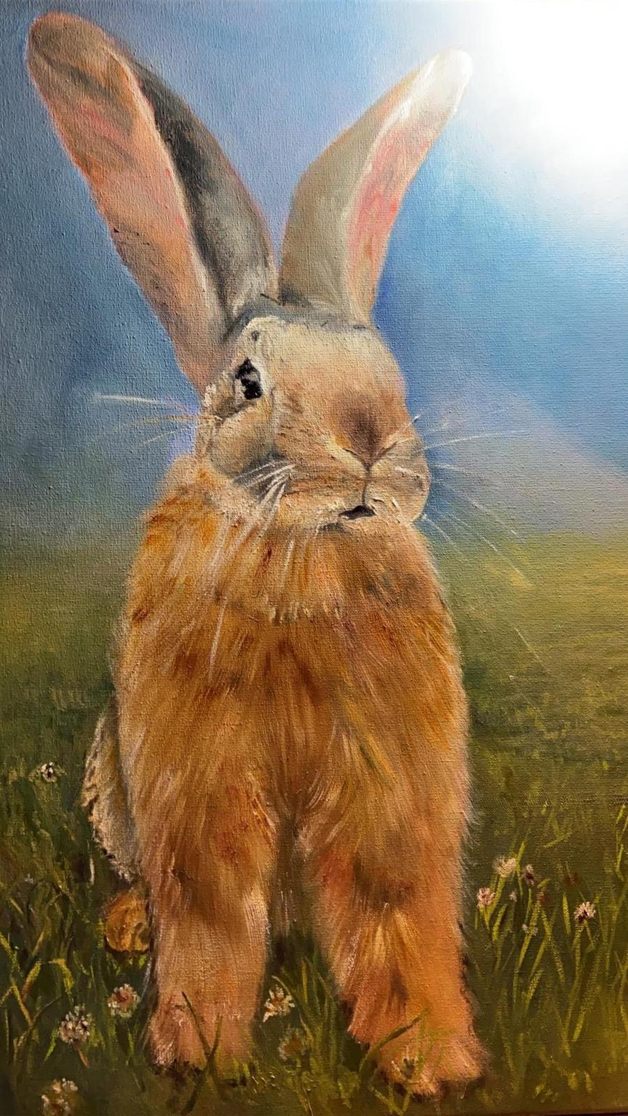 Dieren konijn 1