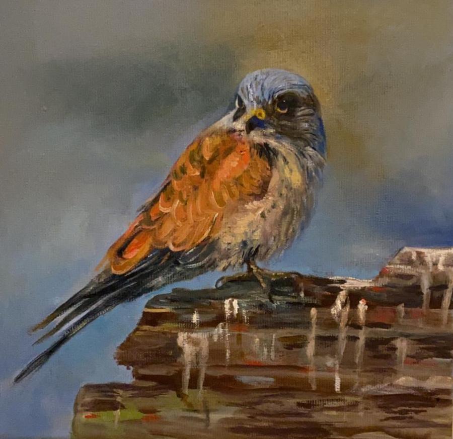 Dieren vogel 1