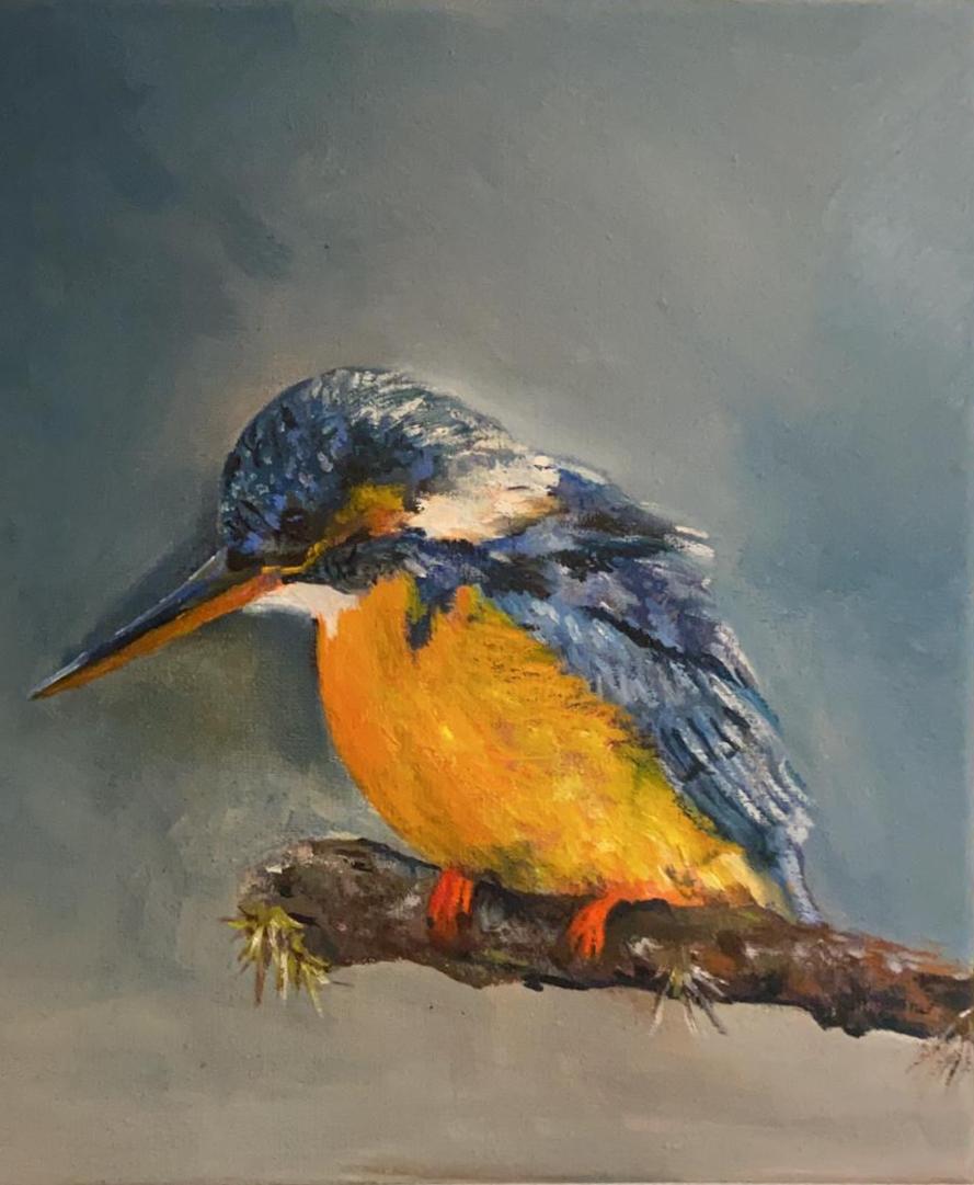 Dieren vogel 2